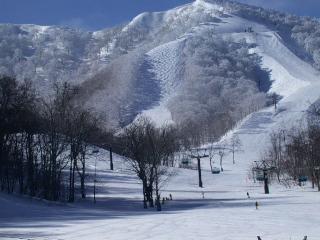 画像に alt 属性が指定されていません。ファイル名: ski_nekoma01.jpg